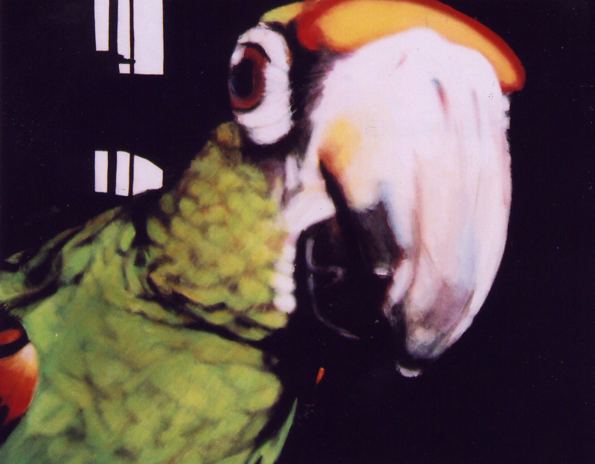 Parrot painting by LJ Lindhurst